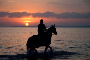Puerto Plata Sunset Horse Back Riding with Cocktails on the  beach