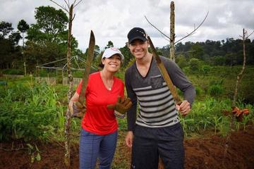 30-Day Volunteering at an Organic Farm in the Tenorio National Park