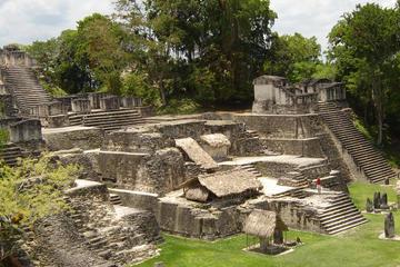 Excursión de un día a Tikal desde la ciudad de Guatemala