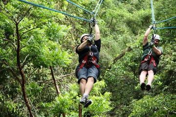 Excursión de aventura en Puerto Vallarta: lancha motora, tirolina y...