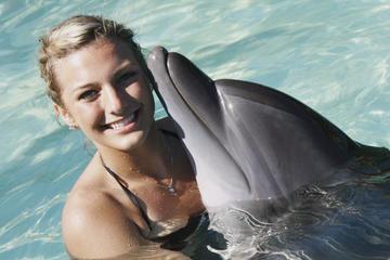 Experiencia en baño con delfines en Nuevo Vallarta