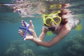 Ilhas Marietas: Cruzeiro com Nado na caverna e Mergulhar com Snorkel...