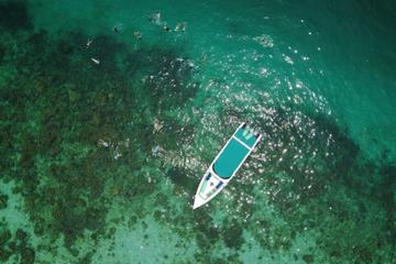 8-Hour Private Speedboat Charter to...