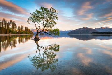 Private Wanaka Photography Tour - 1 Day