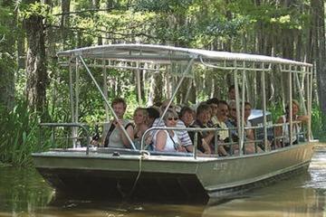 Book Honey Island Swamp Tour on Viator