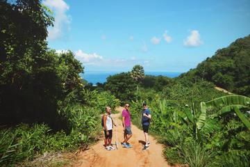 Excursion au Grand Bouddha et randonnée dans la jungle avec déjeuner...