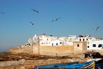 Full-Day Private Tour to Essaouira...