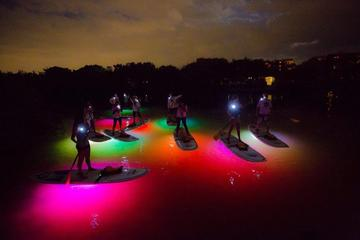 Book Sunset NEON Paddleboard Adventure on Viator