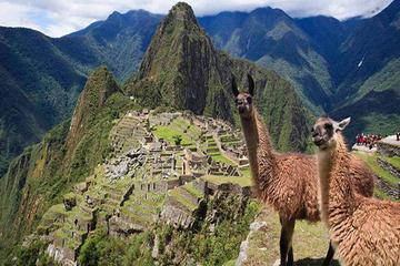 Perú en 7 días: Recorrido por Lima, Cuzco, Valle sagrado y Machu...