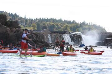 Kayak and Paddleboard tour of...