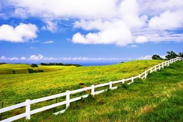Privattur: Organiske gårder og Merriman's Restaurant på Big Island