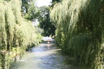 Halbtägige Fahrradtour durch die Stadt München und den Englischen...