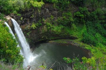Ganztägige Jeep-Safari ins Innere der Insel ab Papeete