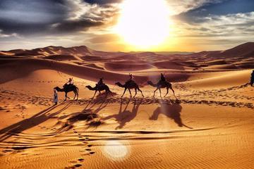 Excursion guidée de 3jours dans le désert de Merzouga en petit...