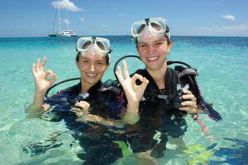 Michaelmas Cay Dive and Snorkel Cruise from Palm Cove