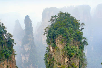 Private Day Trip to Zhangjiajie National Forest Park