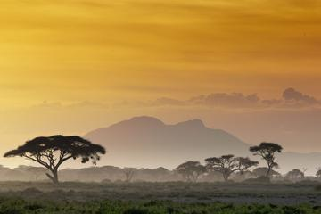 5-Day Panorama Route and Kruger Safari Tour from Johannesburg