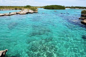 Buceo de superficie en Yalku Caleta y...