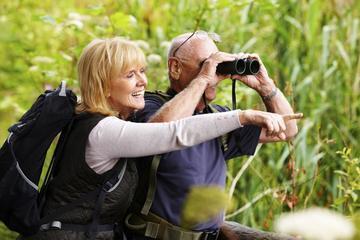 Excursión privada de lujo de observación de aves para principiantes...
