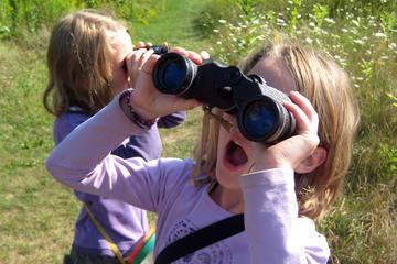 Excursión privada de observación de pájaros para principiantes desde...