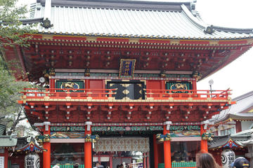 Historic Walking Tour of Tokyo with...