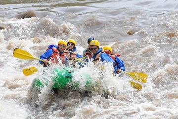 Book Full-day Salt River Whitewater Rafting Trip on Viator