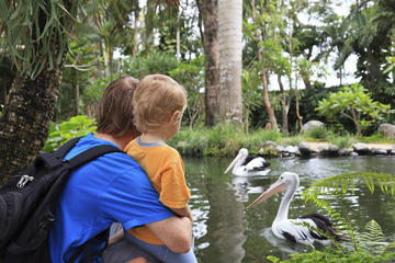 Parque zoológico de Ática con experiencia de compras opcional y...