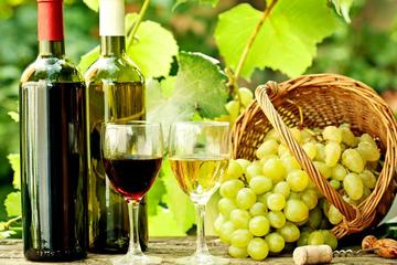 One-Day Wine Tour to Kakheti from...