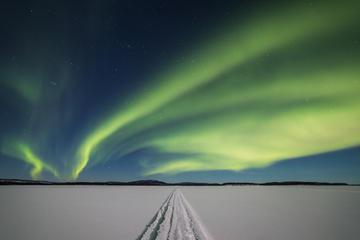 Aurora Hunting Safari to Lake Inari...