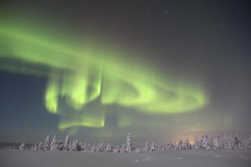 Northern Lights Hunt from...