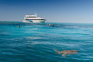 Lady Musgrave Day Trip from Bundaberg Including Snorkeling, Glass Bottom Tour and Guided Island Walk