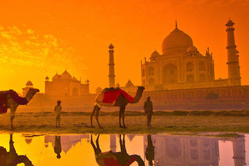 1 Day Taj Mahal Sunrise Tour from Delhi By Car