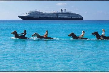 2-Hour Horse Back Ride And Swim from Montego Bay