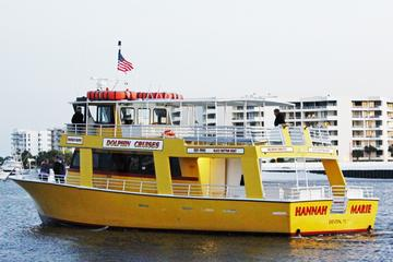 Book Gulf of Mexico Dolphin Cruise on Viator