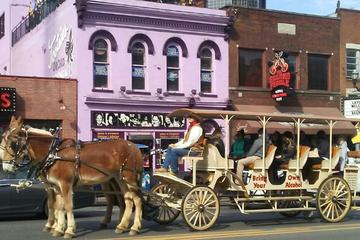 2-Hour BYOB Trottin Tavern Carriage Tour in Nashville