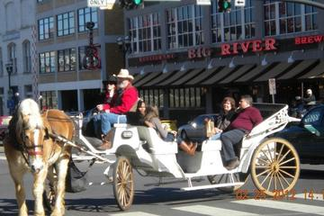 Day Trip Private Downtown Nashville Horse and Carriage Ride near Nashville, Tennessee