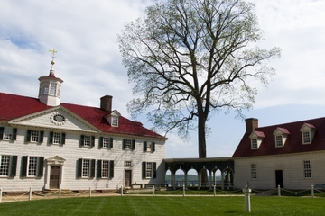 Superoferta en Washington D. C.: Tour por Mount Vernon y el...