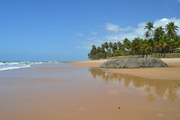 Beach Hopping Day Trip to Praia do Forte