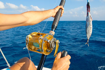Private Deep Sea Fishing Tour from Abrantes
