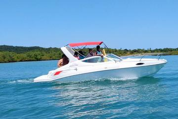 Speed Boat Luncha privat All Saints Bay day excursion