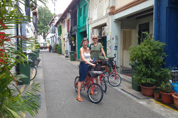 Full-Day Bike and Food Tour from Singapore