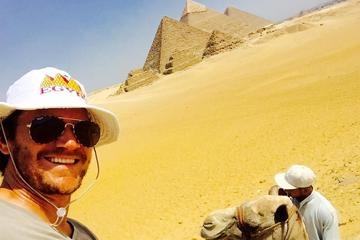 private day  tour  10 hour Cairo stopover to Pyramids sphinx and museum
