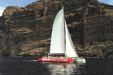 Ausflug mit dem Katamaran inklusive Transfer in Teneriffa