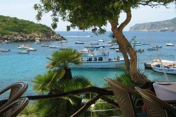 Bootstour zu den Malgrats-Inseln von Pollensa aus