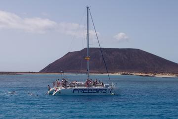 Catamaran Sailing Day to Lobos Island...