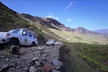 Excursión en Jeep en Gran Canaria con paseo en camello opcional