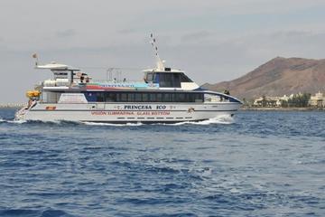 Ganztägige Tour zu Dünen von Fuerteventura mit Mittagessen