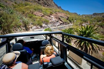 Jeep Tour in Tenerife Including Teide...