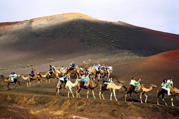 Montar en camello en las dunas de...
