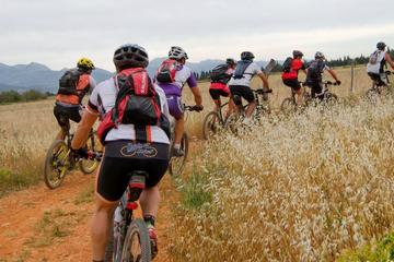Mountainbike und Wandern in Artà